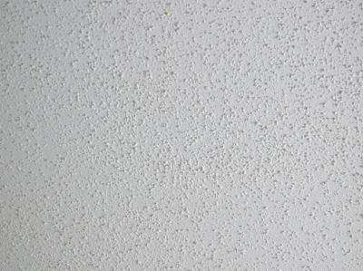 Texture Drywall Sheetrock Contractor Ceiling Water Mold Mildew Damage Portland Vancouver on spraying house paint